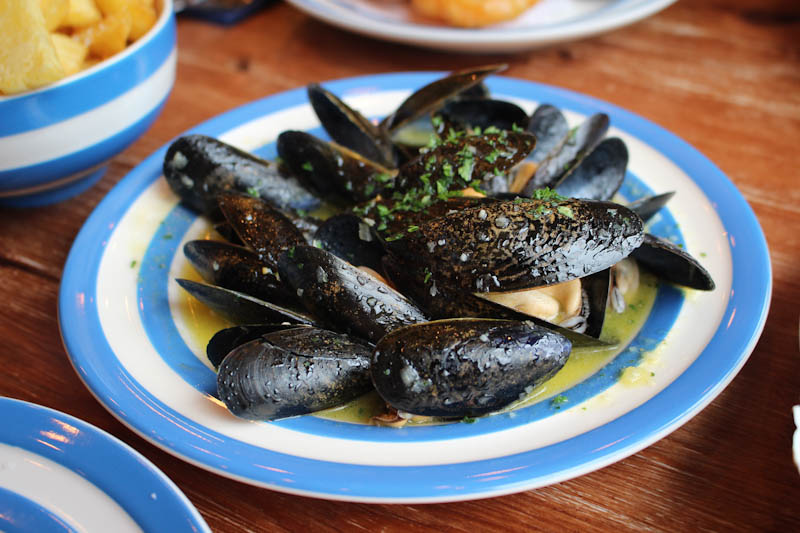 scallop shell bath mussels seafood